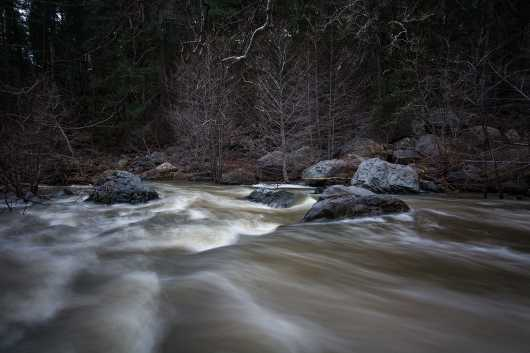 Oak Creek in Spring2 from the Gallery Photos  collection by Andy Rivera