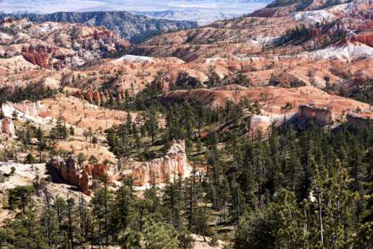Bryce Canyon 7 from the Landscapes collection by Coty Montroy