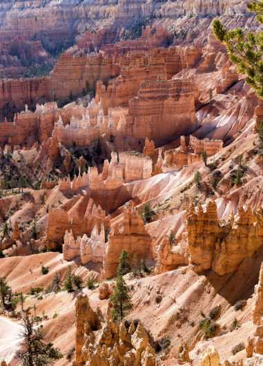 Bryce Canyon 8 from the Landscapes collection by Coty Montroy