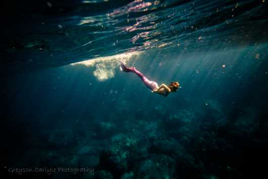 Le Grand Bleu from the Underwater collection by Greyson Carlyle