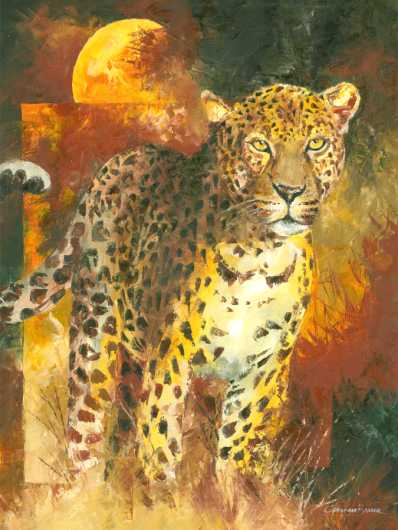 African Leopard Art Prints from the Wildlife collection by Christiaan Bekker