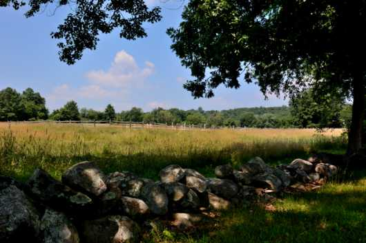 Stone wall in front of Golden FIeld in Harvard, MA from the Summer Landscapes and Flowers collection by jndphoto
