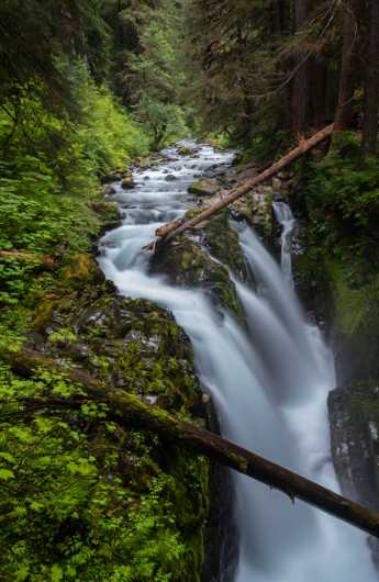 Sol Duc Falls from the Sights Of Washington State collection by Domestic Wanderer Photography