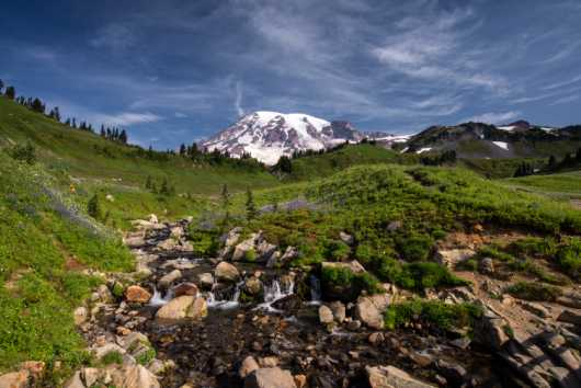 Paradise Park from the Sights Of Washington State collection by Domestic Wanderer Photography