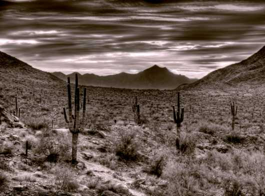 Desert South Mountain - View of Estrella Mountain. from the Arizona collection by Origel Photography