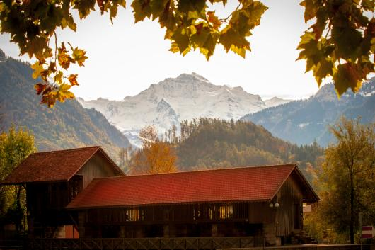 Interlaken Alps from the Pro Seller Album collection by Sonny Banks Photography