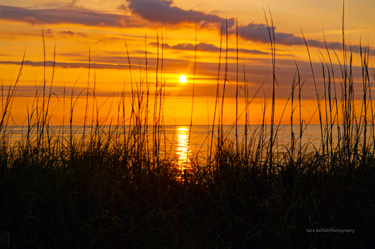 Sunrise Nagshead OBX from the The Outer Banks of North Carolina collection by Cara Walton