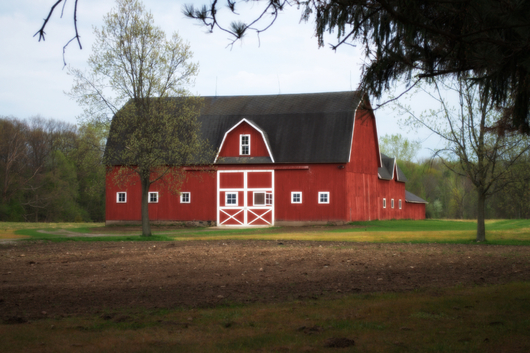 Red Barn from the Buildings collection by S. S. Photography