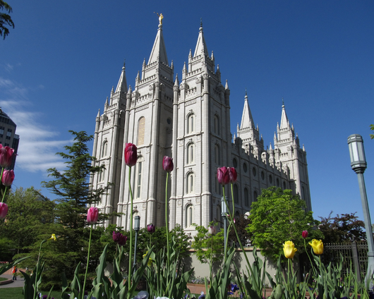LDS Temple Salt Lake City from the Temples and Churches collection by Art4Artists