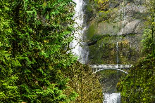 Multnomah Falls, A waterfall in Oregon from the landscapes collection by Sharon Joubert