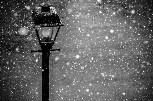 Black & White Buffalo Winter Lamppost. Snow Series.  from the Gallery Selection: July 2016 collection by clear. photography