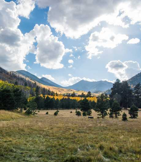 Inner Basin Meadow View  from the Gallery Photos  collection by Andy Rivera