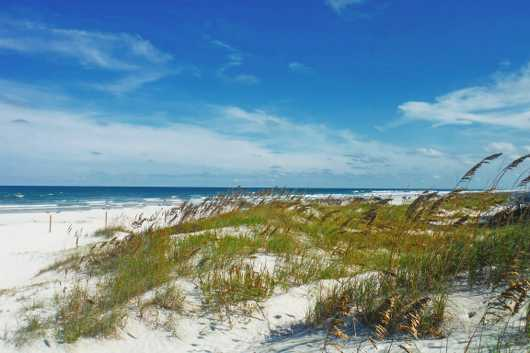 North Beach Dunes, NSB from the New Smyrna Beach collection by Russell C Tucker
