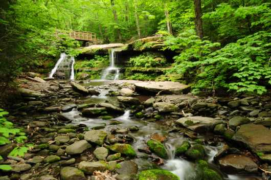 Westkill Mountain Waterfall from the Chris Priedemann Photography collection by Chris Priedemann