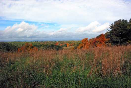 Fall Field, Oh What a Day from the Fall Landscape  collection by jndphoto